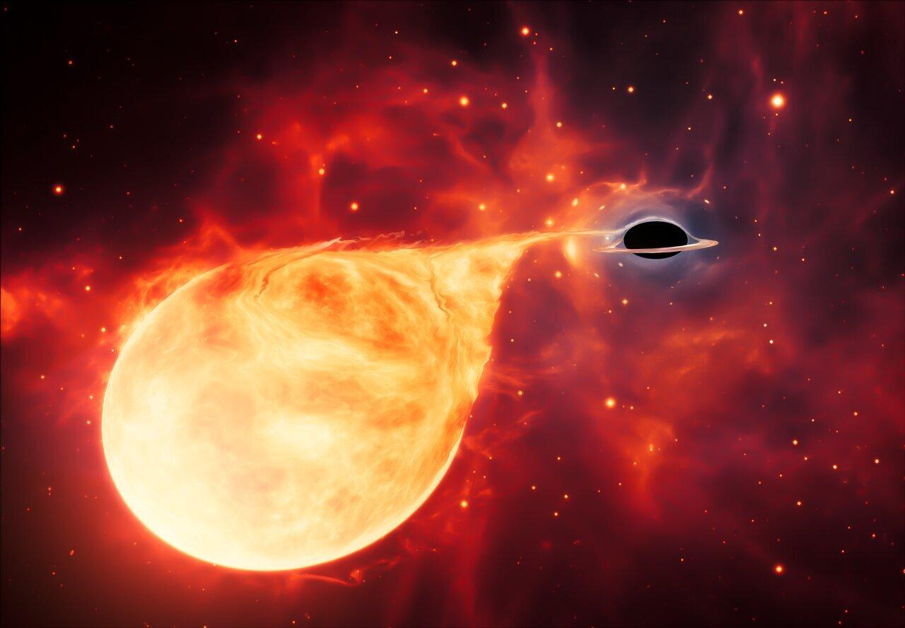 This artist's impression depicts a star being torn apart by an intermediate-mass black hole (IMBH), surrounded by an accretion disc. This thin, rotating disc of material consists of the leftovers of a star which was ripped apart by the tidal forces of the black hole. (Image: ESA/Hubble, M. Kornmesser)