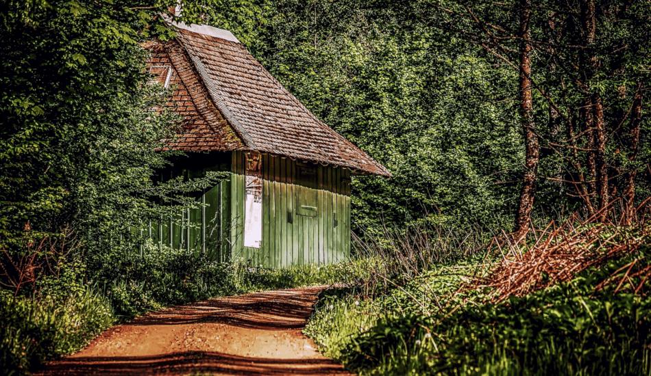 (Image via pixabay / CC0 1.0)