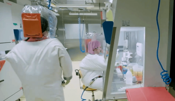Scientists will research Taylor's recovery.(Image: Screenshot / YouTube)