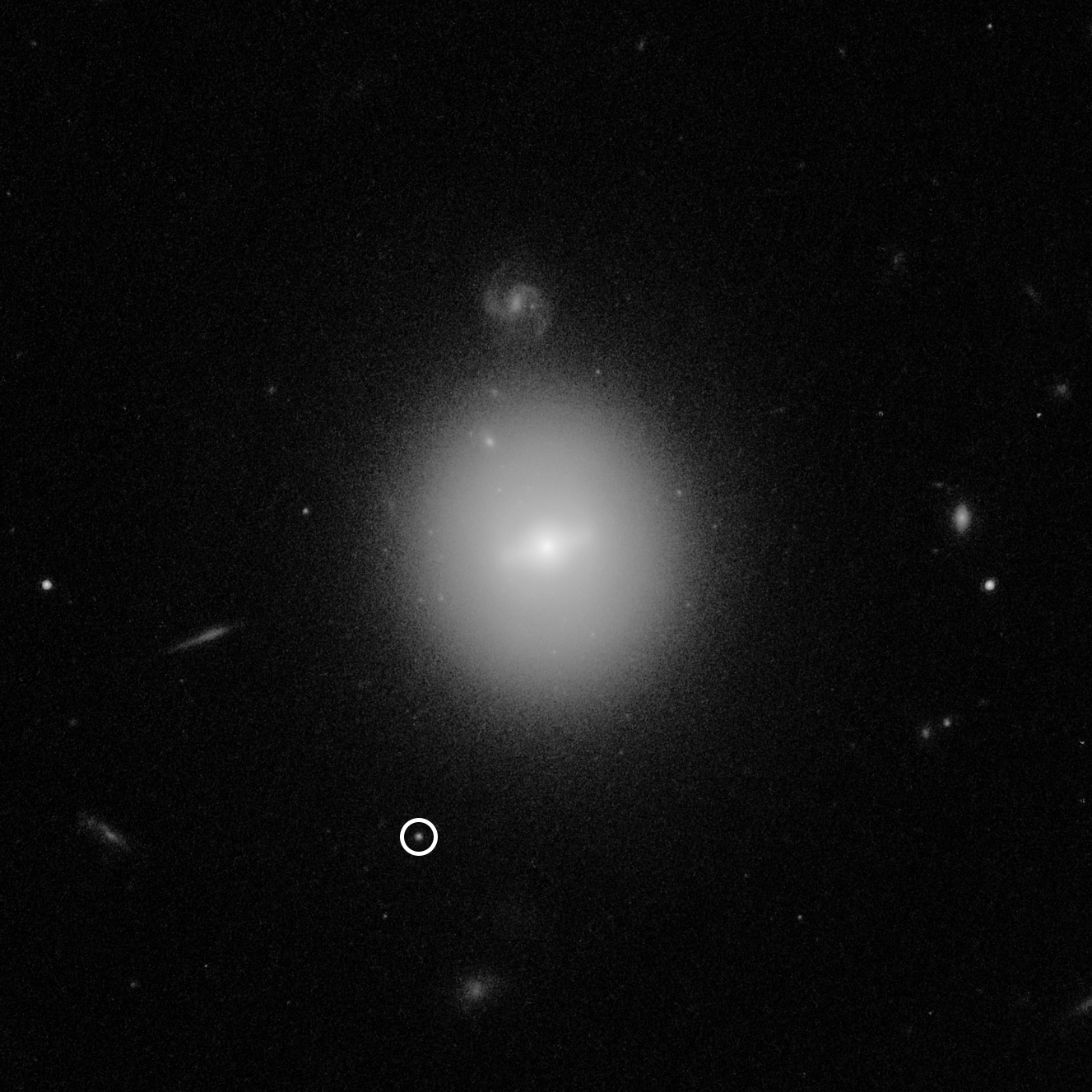 This Hubble Space Telescope image identified the location of an intermediate-mass black hole, weighing 50,000 times the mass of our Sun (making it much smaller than supermassive black holes found in the centers of galaxies). The black hole, named 3XMM J215022.4?055108, is indicated by the white circle. The elusive type of black hole was first identified in a burst of telltale X-rays emitted by hot gas from a star as it was captured and destroyed by the black hole. Hubble was needed to pinpoint the black hole's location in visible light. Hubble's deep, high-resolution imaging shows that the black hole resides inside a dense cluster of stars that is far beyond our Milky Way galaxy. The star cluster is in the vicinity of the galaxy at the center of the image. Much smaller-looking background galaxies appear sprinkled around the image, including a face-on spiral just above the central foreground galaxy. This photo was taken with Hubble's Advanced Camera for Surveys. (Image: NASA, ESA and D. Lin (University of New Hampshire))