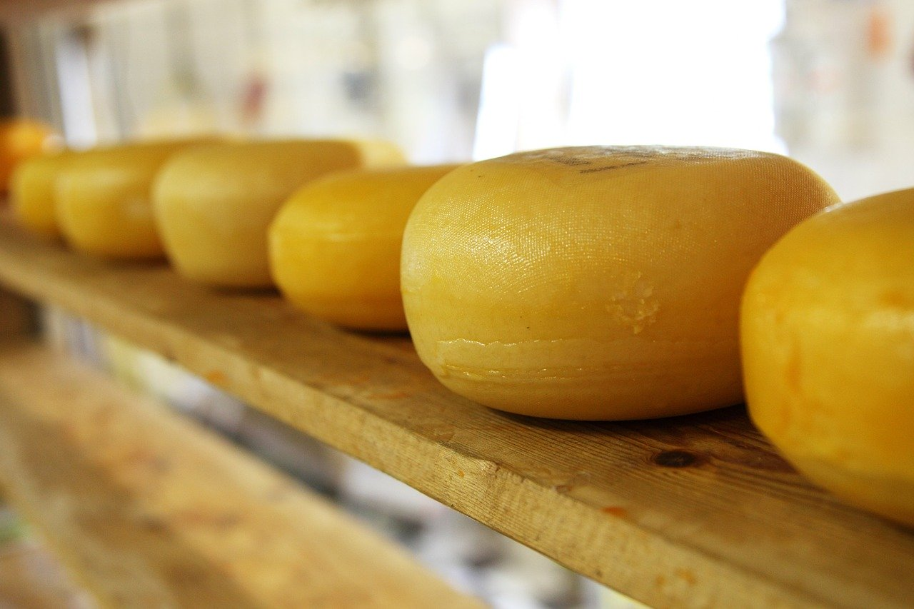If you've ever enjoyed a slice of cheese, you've enjoyed a byproduct of bioprocessing. (Image: Max Pixel / CC0 1.0)