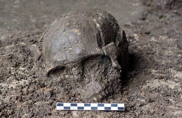 Skull of Qihe 2, a ~8,400-year-old individual from Qihe Cave, Fujian, China (Image: FAN Xuechun)