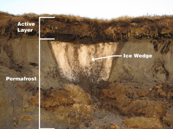 The layers of permafrost. (Image: Benjamin Jones, USGS. Public domain (modified))