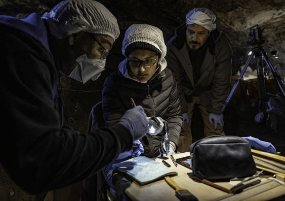 Dr Lorena Becerra-Valdivia (centre) sampling material for radiocarbon dating alongside fellow researchers Prof. Joaquín Arroyo-Cabrales and Dr Juan I. Macías-Quintero (from left to right). (Image: Devin A. Gandy)