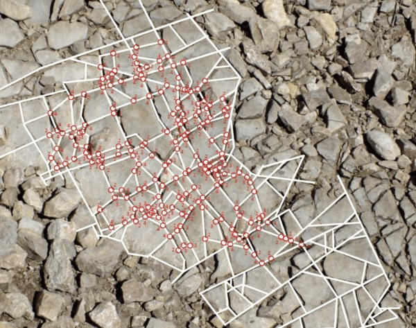 Nine of 10 stone fragments take the rough form of a cube. (Image: Penn Today) (Image: Minghui)