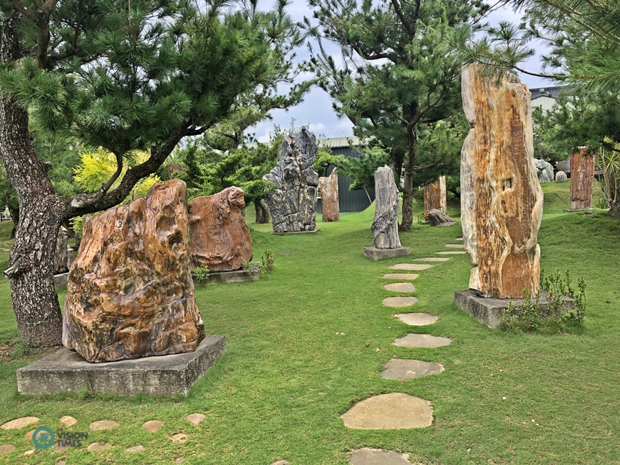 There are many petrified wood at Dazhishan Xuankong Temple. (Image: Billy Shyu / Vision Times)