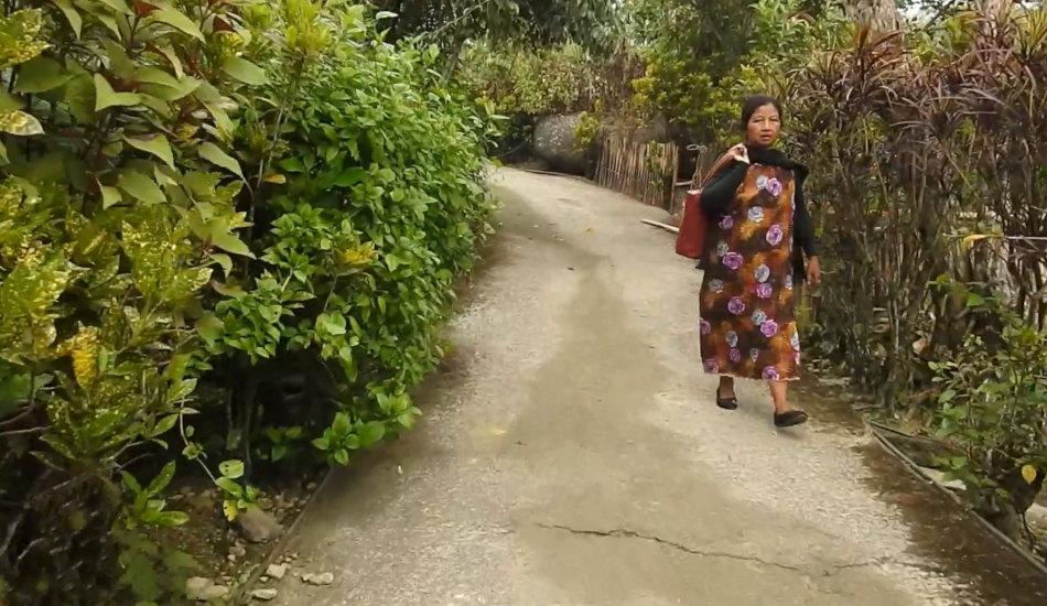 Indian woman walking through the village.