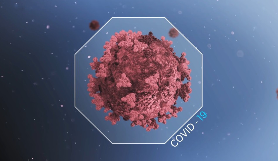 An image of the coronavirus.
