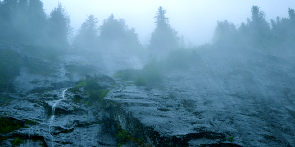 A rocky slope with evergreen trees at the top seen faintly through the fog.
