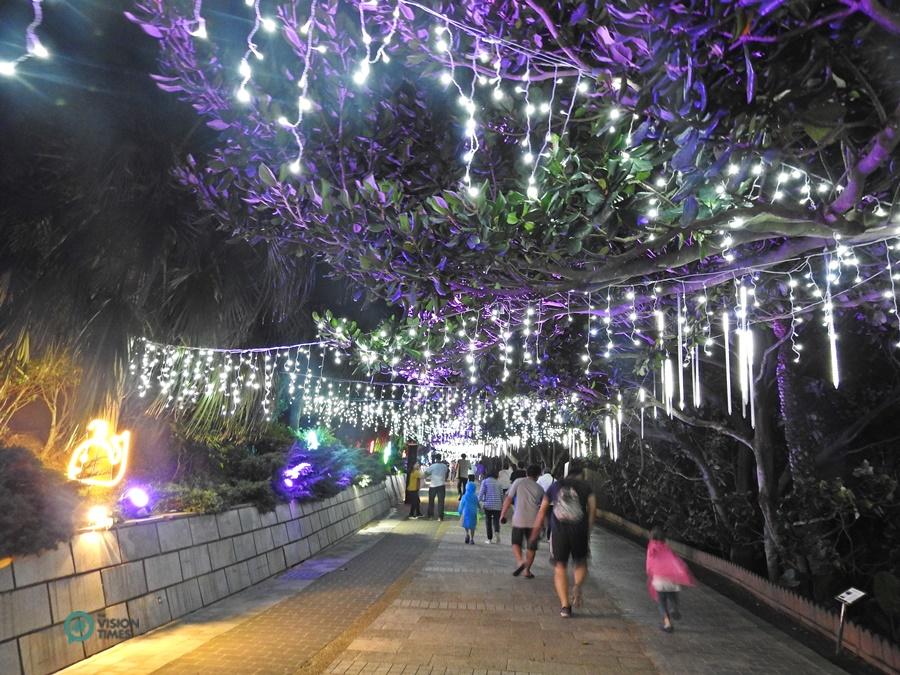 1-Yehliu Geopark Light Show-8