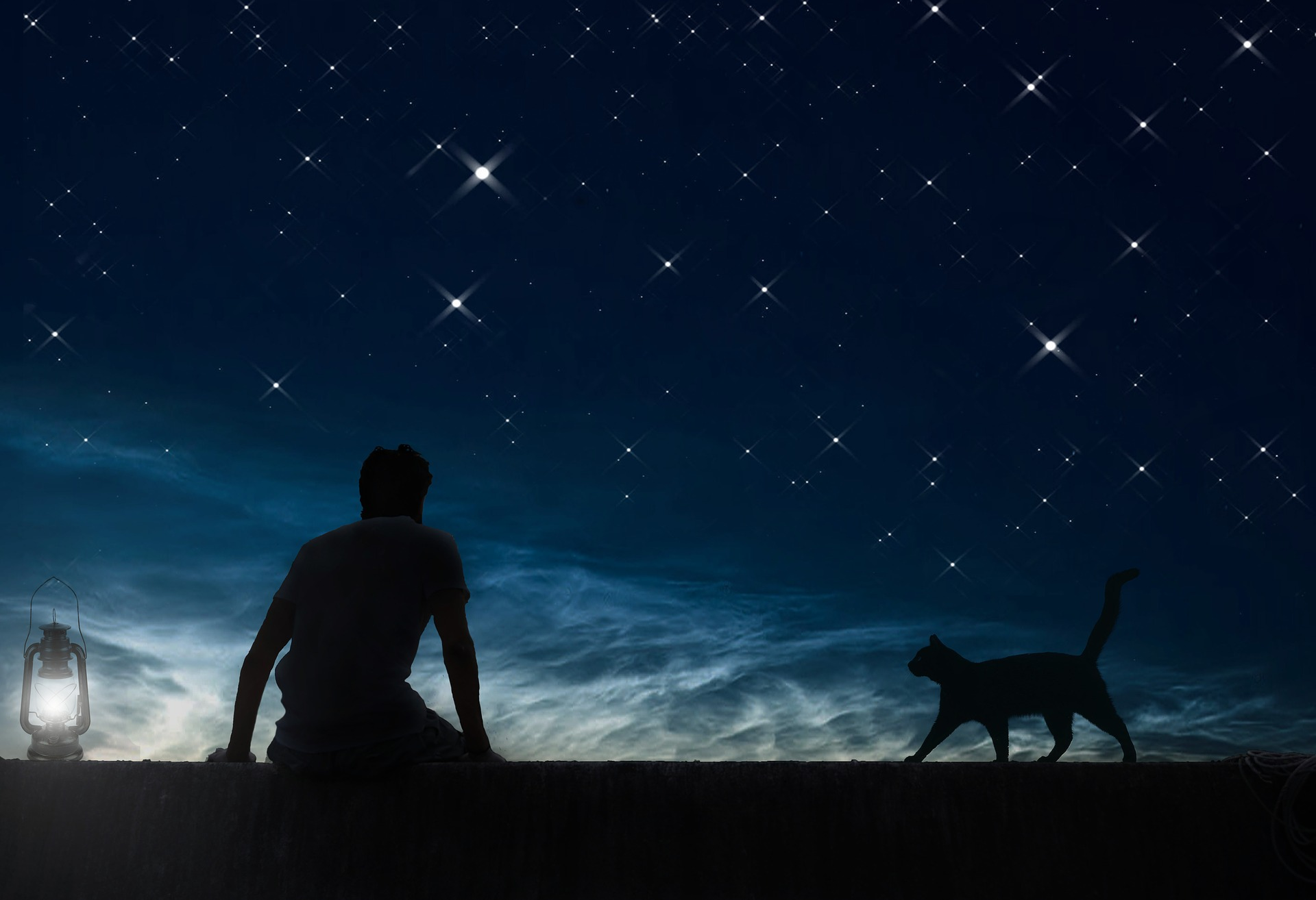 Man sitting at night with cat.