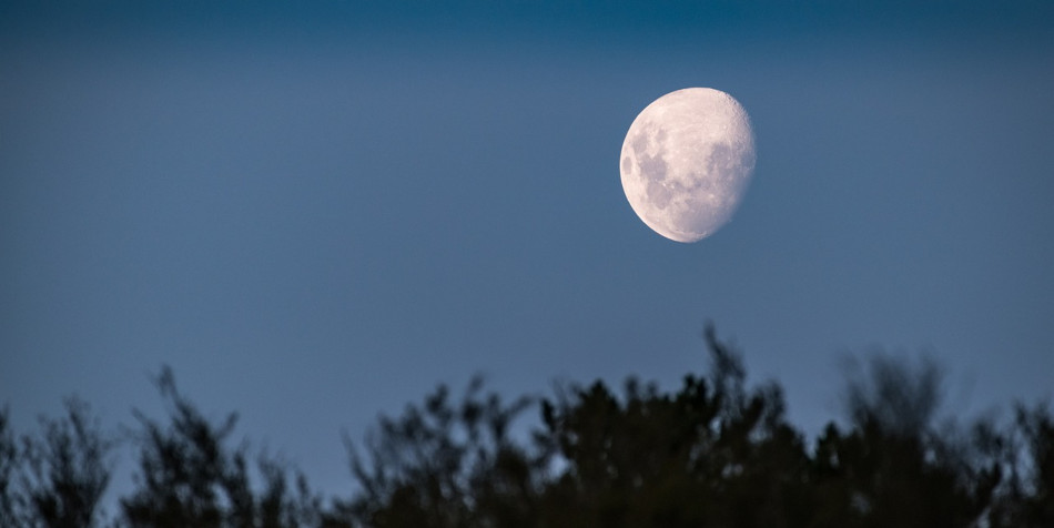 The moon seen in the evening sky.