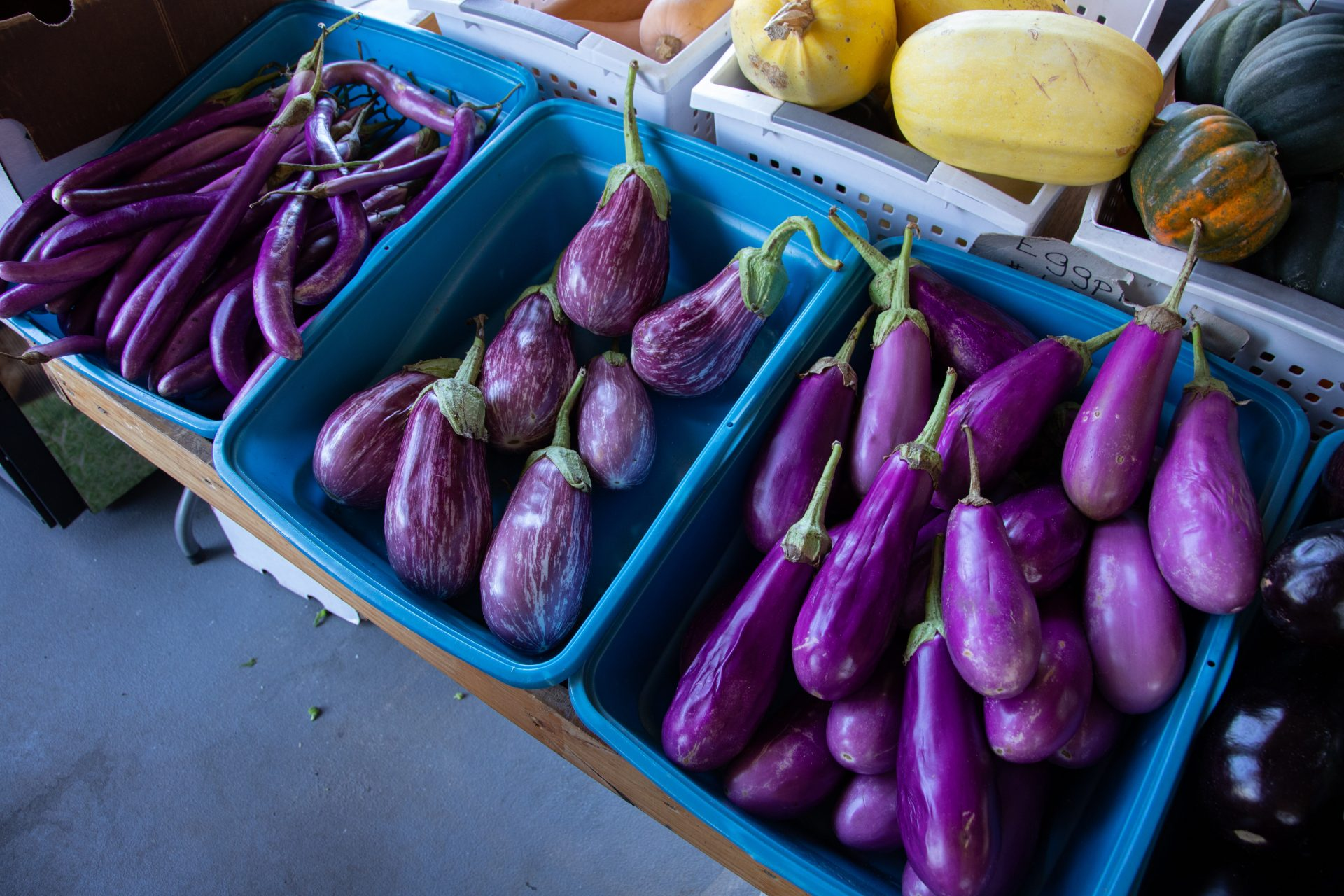 eggplants in a market