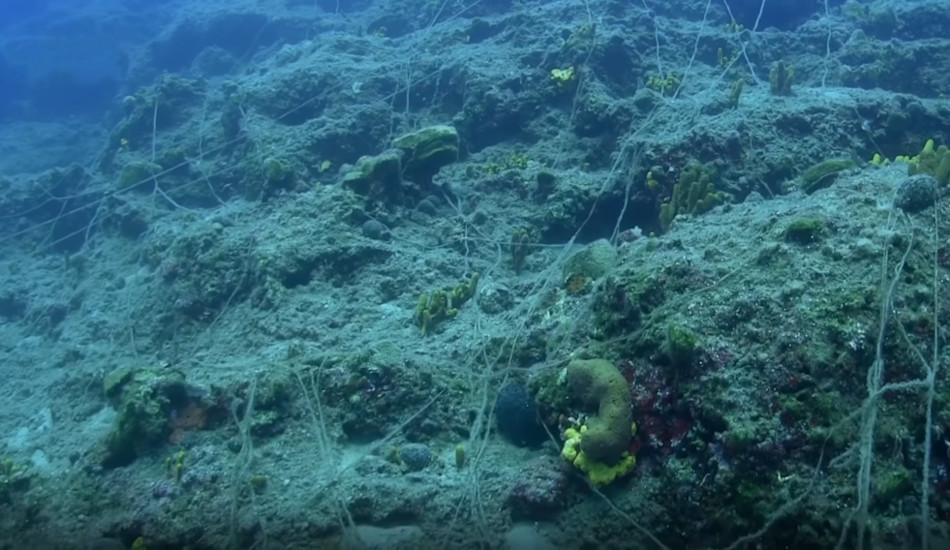 Damaged seabed littered with a trawling net.