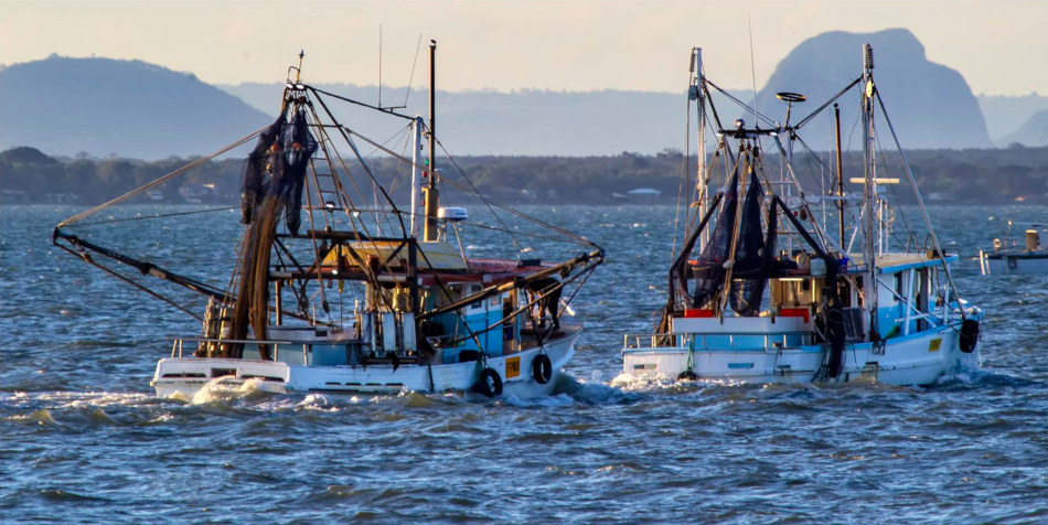A pair of boats on their way out for night trawling.