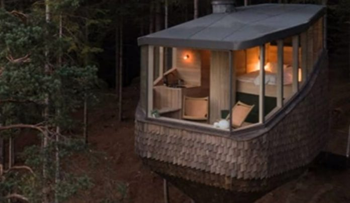 Woodnest Cabins – Experiencing The Beauty Of The Wilderness