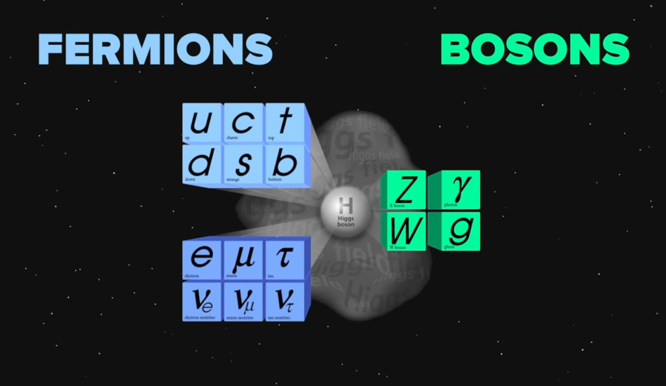 A table listing different types of fermions and bosons.