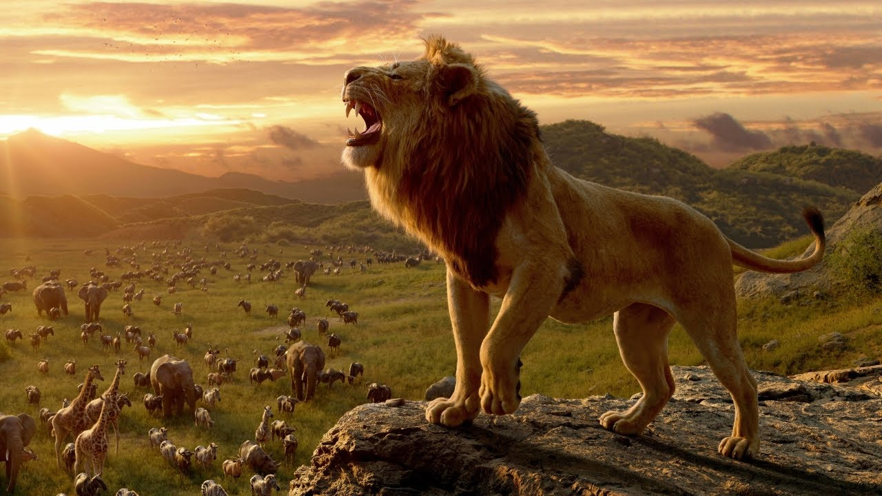 """From the 2019 Disney movie, """"The Lion King"""", Simba stands on a rock above the Pride Lands and roars."""