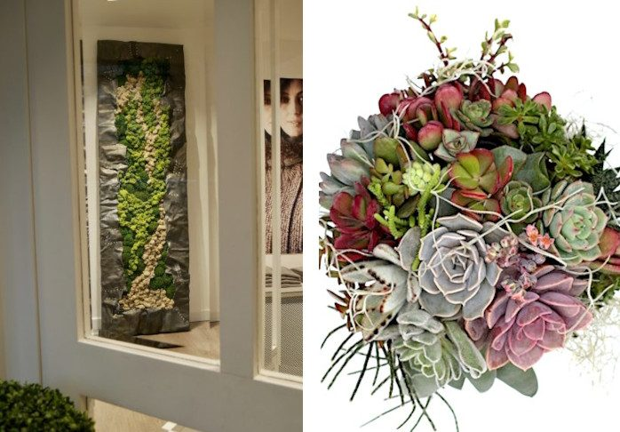 Artwork by Luca Nuvoli made from flowers along with a bouquet he created from succulents.