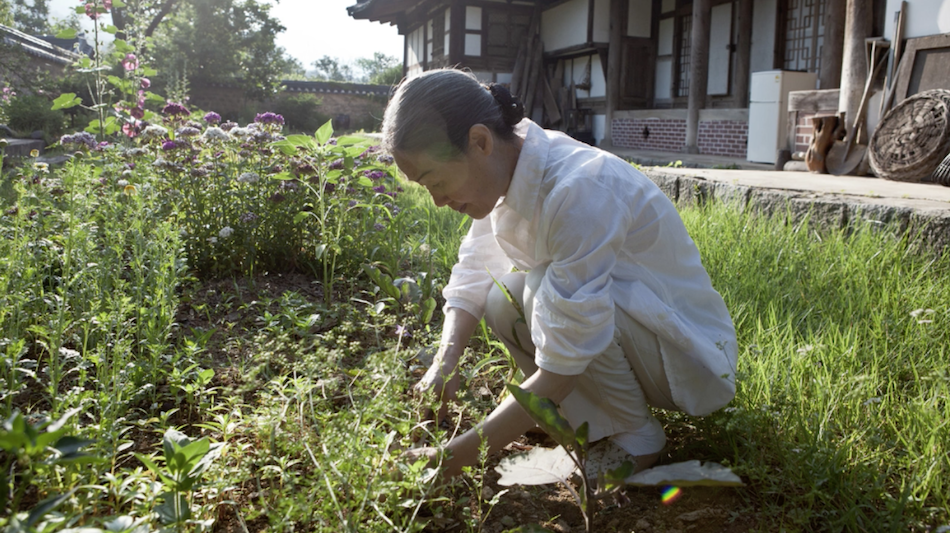 Tea house owner crouched down working in garden wears white purple flowers and tea house in background