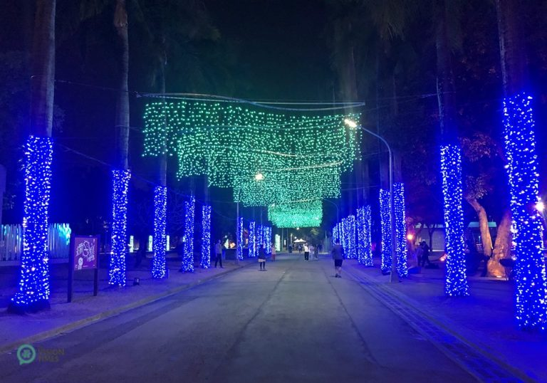 """""""Polar Light Avenue"""", a display with blue strings of lights wrapping trees on both sides of a lane while green strands of lights hang down from overhead, a lit avenue at the 2020 Christmas Festival, Pingtung Park, Taiwan."""