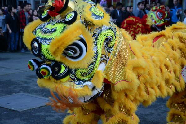 On Chinese new year, the lion dance is one of the most popular festive motives.