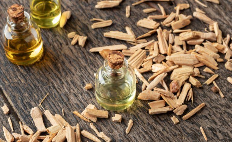 A bottle of cedar essential oil with pieces of cedar wood.
