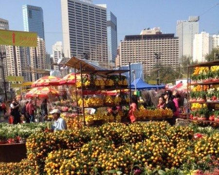 chinese new year flower market in hong kong mandarin trees