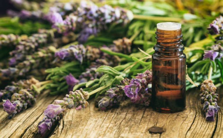 Fresh lavender and essential oil on wooden background.