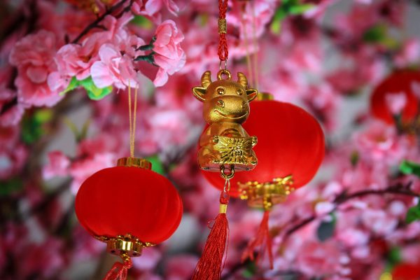 Dangling from a peach tree twig with blossoms is a golden ox. 2021 marks the year of the ox in the Chinese zodiac.