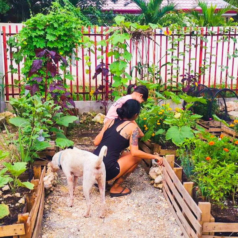 mother, son and dog in garden