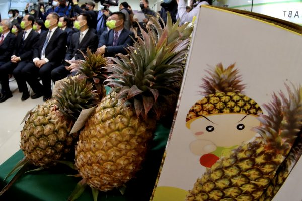 Taiwan_Agriculture_Pineapple_Taiwanese_Taiwan_Pineapples
