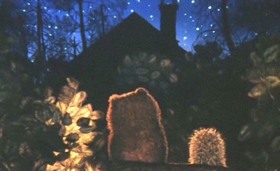Animation still of a the back of a bear and hedgehog sitting on a log by a cabin in the forest gazing at the stars.