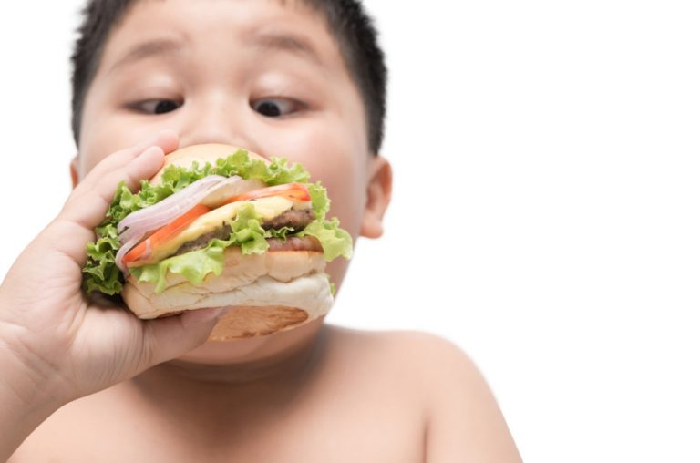 Obese Asian boy eating a cheeseburger loaded with lettuce, tomato, and onion.