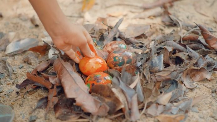 hand painted easter eggs put into a nest of leaves on the ground
