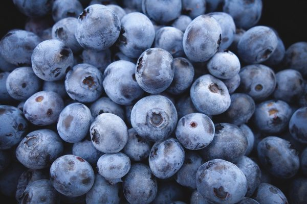 Blueberries laying in a pile.