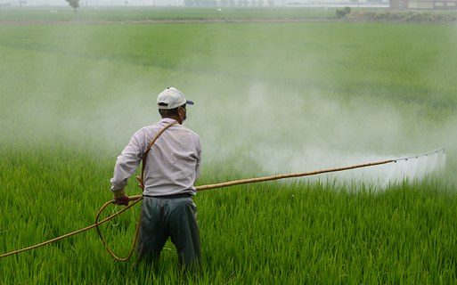 Pesticide use in European agriculture has been the norm for more than 70 years.