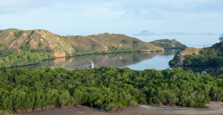 Home of the pink beach of Indonesia, the Komodo National Park.