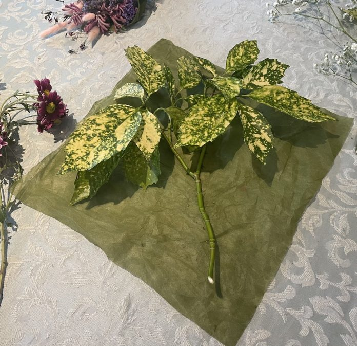 green paper and green leaves at the start of building a bouquet