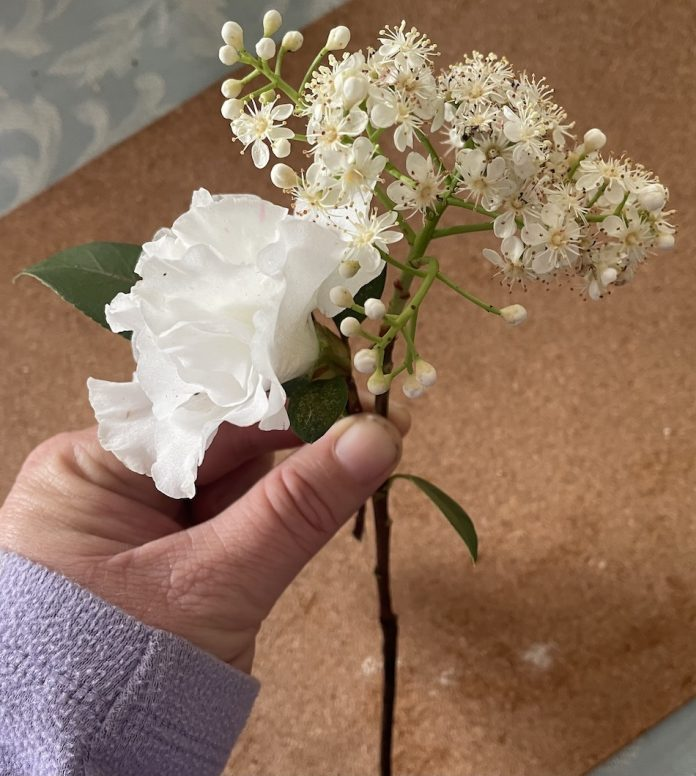 Prep for making a corsage two white flowers in hand