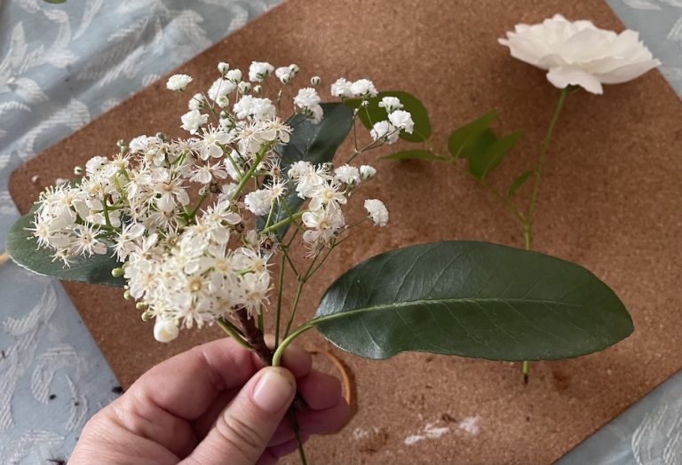 Privet Ligustrum flower and leaves held with one stem of Baby's Breath and then position the Iceberg rose over the leaf to close the gap, next place the pink Geranium under the white flowers. Adjust flowers so they sit balanced then grip all together tightly. Wrap a pink ribbon around the stems of the posy tightly and tie a knot and a bow.