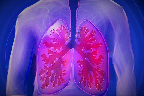 purple and red diagram of lungs
