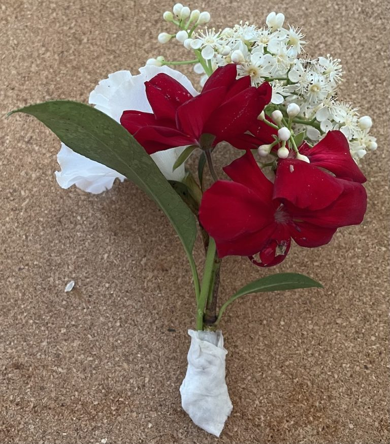 Making a corsage with Privet Ligustrum flower and leaves then adding a white Azalea then adding a red Geranium. Cut stems to make short and neat and wrap a small piece of wet tissue around the base. The tissue will keep the base of the flowers moist.