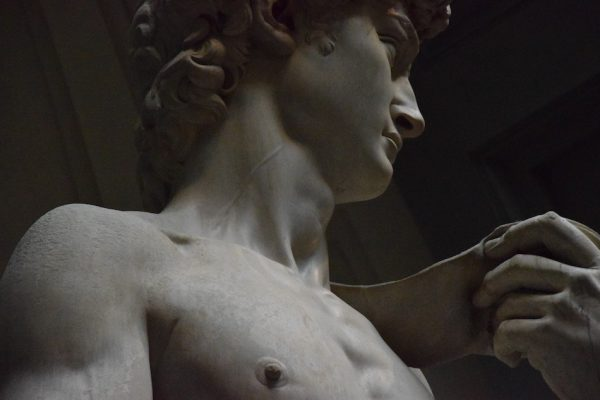 detail of Michelangelos scultpure David close up of face and shoulder and chest and hand