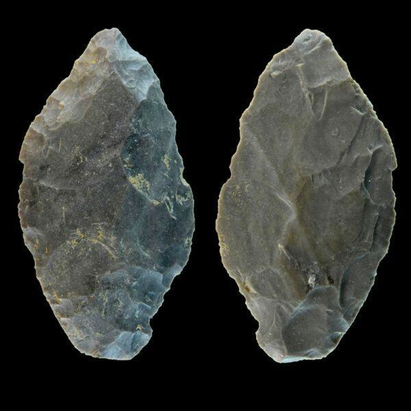 Leaf points used in Neanderthal hunting.