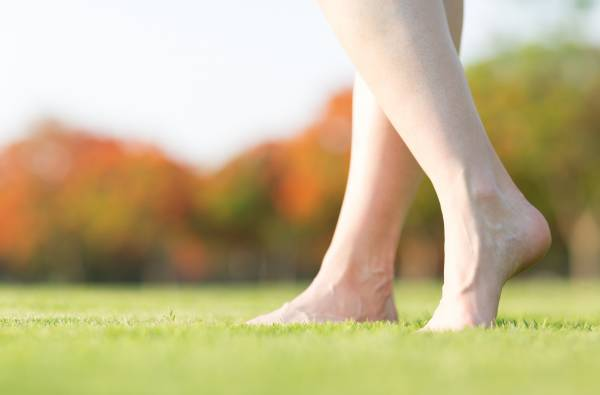 When barefoot walking, negatively charged electrons are absorbed through your foot's sole directly causing your whole body to equalize to the Earth's energy.