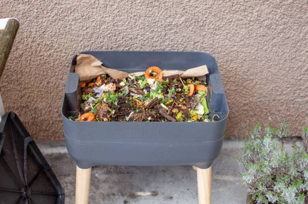Gray plastic vermicomposting bin with wooden legs and filled with food scraps sits on a patio.