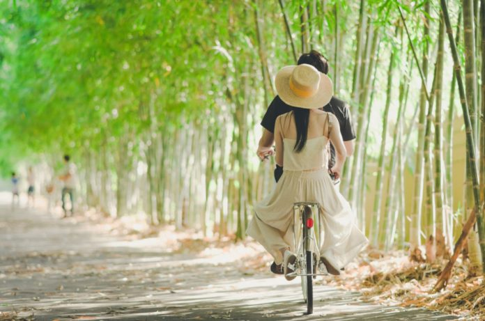 A couple riding a bike through the bamboo forest.