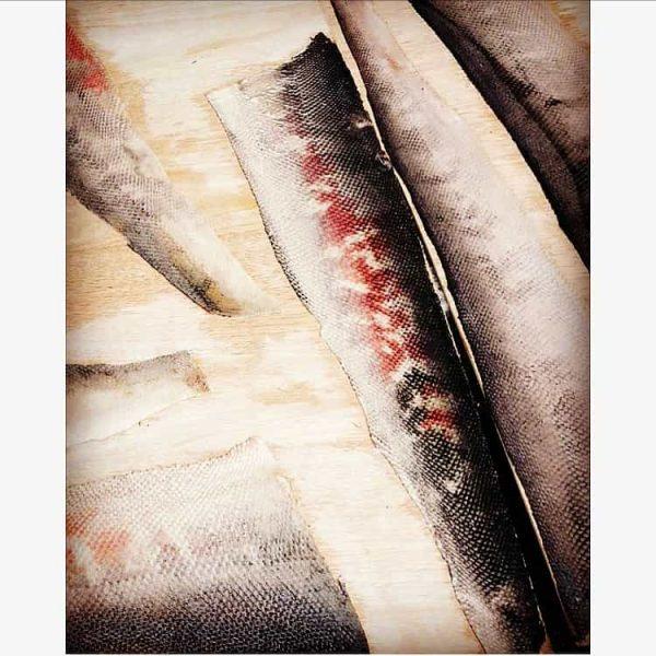 fish_skins