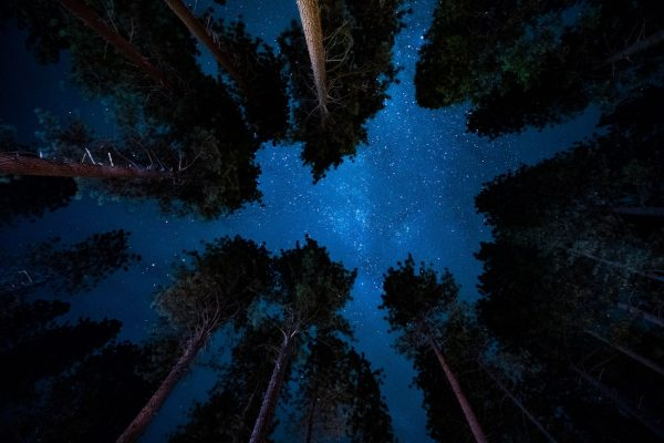 Nature nourishes the soul, inspires us to dream, and grants us a nightly magical wish upon a star.